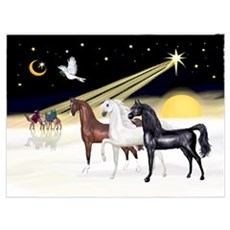 XmsDove/3 Horses (Ar) Poster