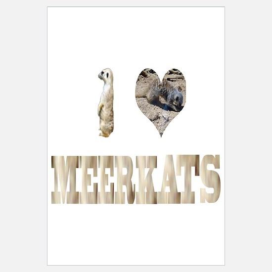 i love meerkats
