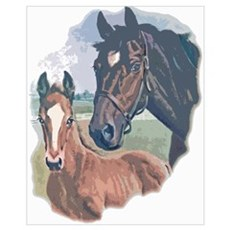 mare and colt portrait Poster