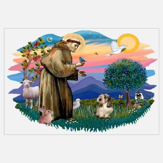 St Francis #2/ PBGV #4