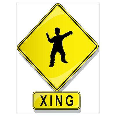 Tai Chi XING Poster