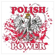 Polish power Framed Print