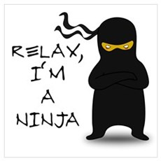 Relax, I'm a Ninja Poster