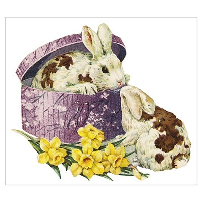 Easter Bunny Daffodils Framed Print