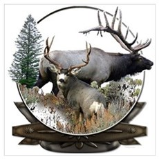 Big game elk and deer Poster