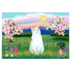 Blossoms / (White) Cat Poster