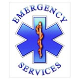 Ems star of life Wrapped Canvas Art