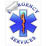 Ems star of life Wall Decals