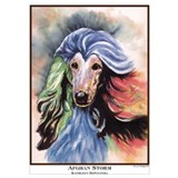 Afghan hounds Framed Prints
