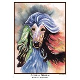 Afghan hounds Posters