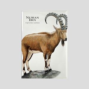 Nubian Ibex Rectangle Magnet