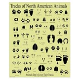 Animal track Wrapped Canvas Art