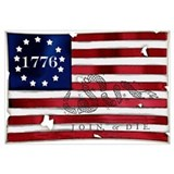 1776 american flag Framed Prints