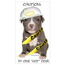 Pit Bull Terrier Puppy Poster