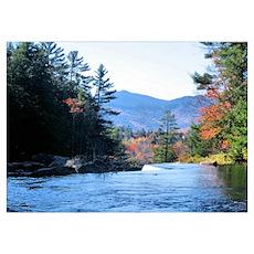 Autumn Mountains Stream Poster