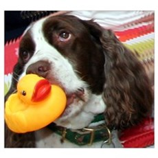 Doggy and Ducky Loving Friends Poster