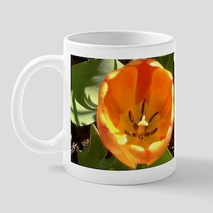 Orange tulips Mug