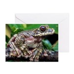 Rabb's Gliding Frog Greeting Cards (Pk of 10)