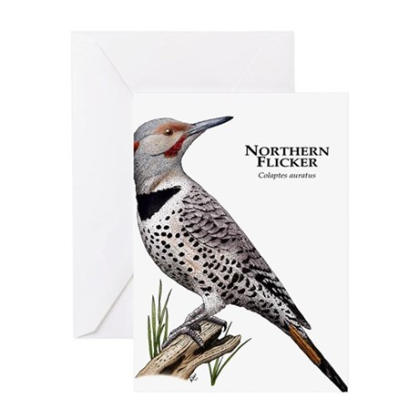 Northern Flicker Greeting Card