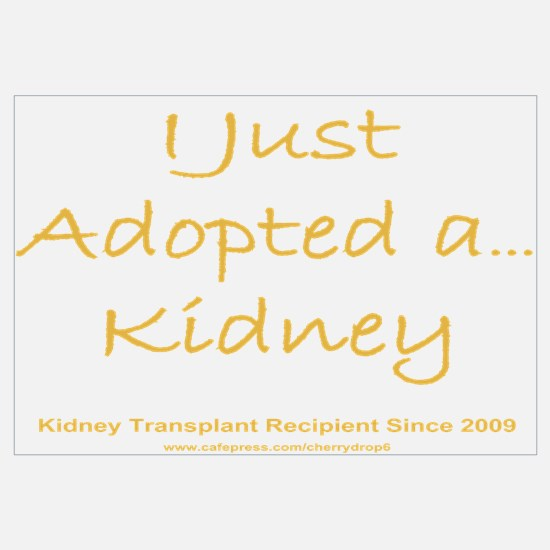 2009 Adopted Kidney Transplant