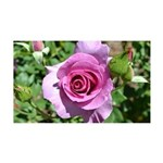 Beautiful Rose 38.5 x 24.5 Wall Peel