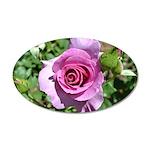 Beautiful Rose 38.5 x 24.5 Oval Wall Peel