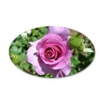 Beautiful Rose 38.5 x 24.5 Oval Wall Peel