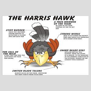 The Harris Hawk