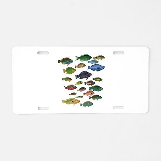 Cute Belize Aluminum License Plate