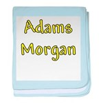 Adams Morgan baby blanket