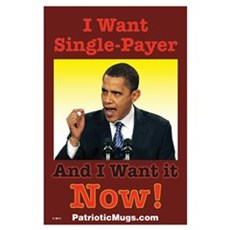 Single Payer Poster