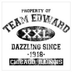 Property of Team Edward Poster