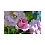 Romantic Pink Rose 38.5 x 24.5 Wall Peel