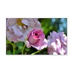 Romantic Pink Rose 22x14 Wall Peel