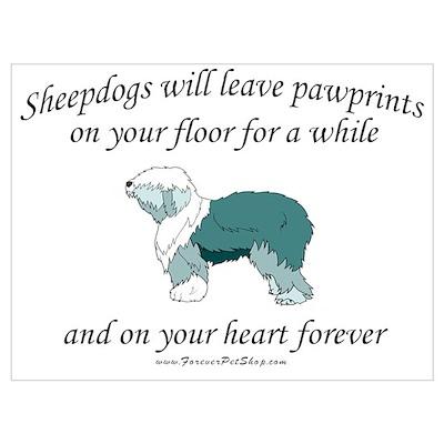 Sheepdog Pawprints Poster