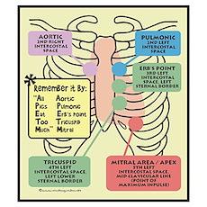 Remember Cardiac Landmarks Poster