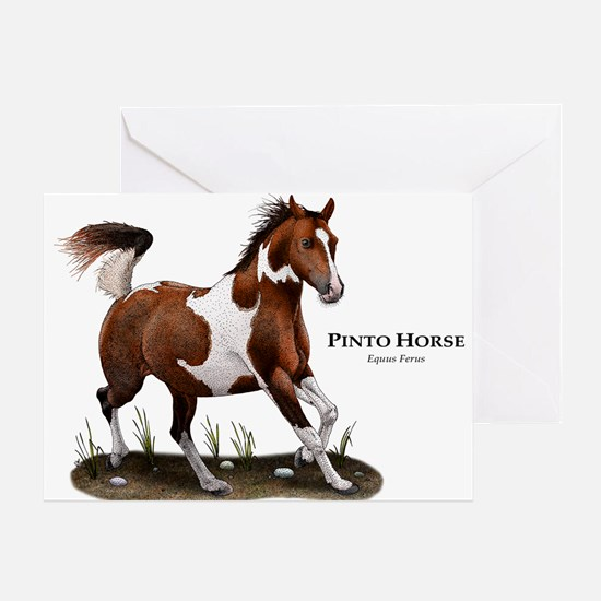 Pinto Horse Greeting Card
