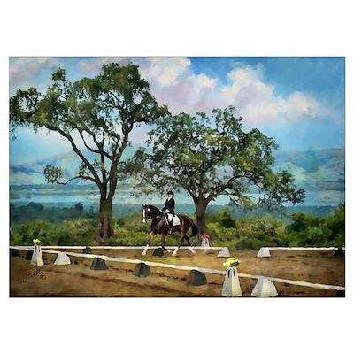 Woodside Trot Dressage Horse 10x14 Poster