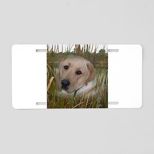 Labrador In Wetland Aluminum License Plate