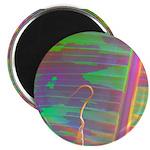 Rainbow-Colored Banana Leaf Magnet