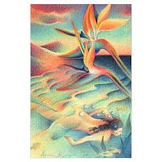 Mermaid of the Baja Poster