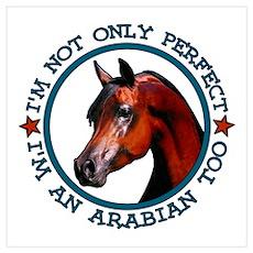 Perfect Arabian Horse Poster