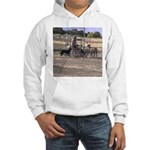 Herding Dog Art Hooded Sweatshirt