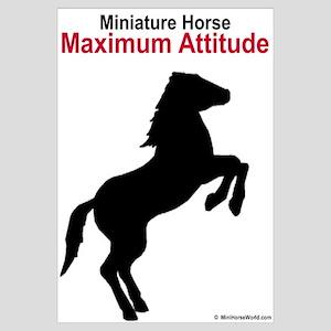 Miniature Horse Maximum Attitude