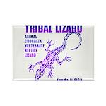 lizard Rectangle Magnet (10 pack)
