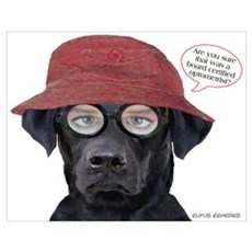 Black Lab Optometrist Poster