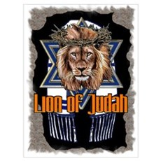 Lion of Judah 2 Framed Print