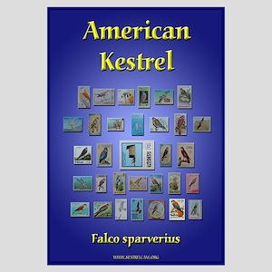 KestrelCam