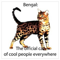 Cool people love bengals Poster