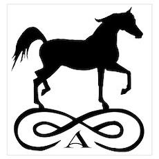 Infinity Arabian Horse Poster